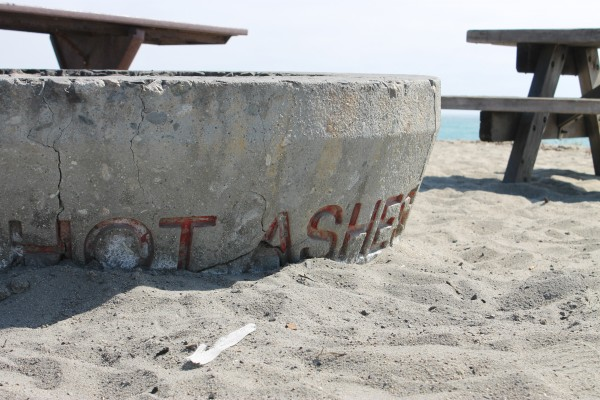 Capistrano Beach Fire Pits to be Removed by OC Parks - Capistrano Beach Fire Pits To Be Removed By OC Parks Dana Point Times