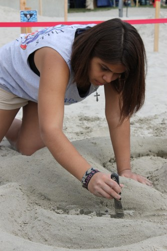 Jenny Lopez carves out the Dana Hills High School's Fine Arts Department dolphin logo at last year's Dana Point Festival of Whales. Photo by Andrea Papagianis