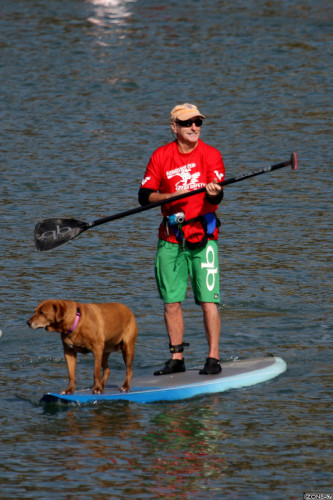Mickey Muñoz demonstrates his SUP style with his dog Gidget at a past Mongoose Cup event. Photo by Alan Gibby