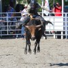 Professional riders will compete at the 14th annual Rancho Mission Viejo Rodeo, Aug. 23 and 24. Photo: Andrea Swayne