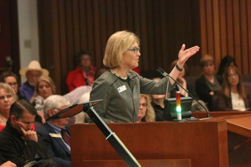 San Clemente City Councilwoman Lori Donchak spoke to the Orange County Emergency Medical Care Committee on April 29 about why the hospital is important to area residents. Photo: Eric Heinz