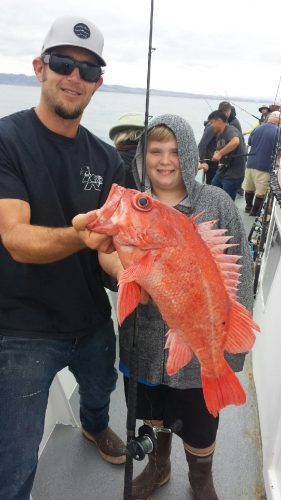 Dana wharf fish count bass fishing heating up dana for Fish count dana point