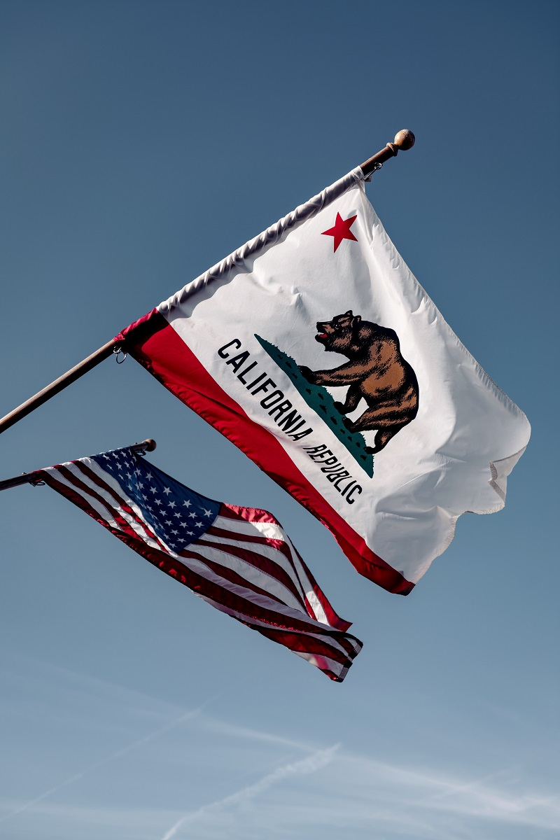 California's Road to the Recall Election - Dana Point Times